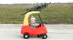 Christmas tree delivery - Cute and funny baby driving a toy car with a small Christmas tree on the roof. Christmas Tree Delivery, Christmas Time, Christmas Cards, Christmas Ideas, Christmas Minis, Christmas Stuff, Family Christmas, Holiday Ideas, Christmas Decor