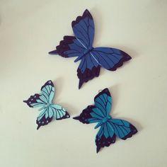 Kelebek seti