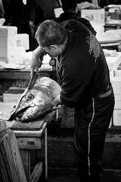 Fish Market in Tokyo, Japan