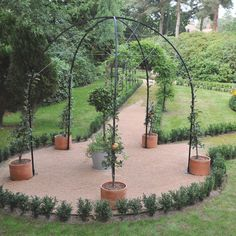 Harrod Fruit Tree Gazebos with their single upright leg styles, professional galvanised steel wire and tensioners are ideal for training apple and pear trees - Harrod Fruit Tree Gazebos. Saved from Harrod Horticultural Garden Supplies, Tools & Equipment Espalier Fruit Trees, Fruit Tree Garden, Apple Garden, Garden Archway, Garden Gazebo, Garden Trellis, Wisteria Trellis, Gardening Supplies, Garden Projects