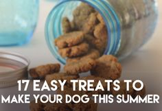 17 Cool Treats To Make Your Dog This Summer