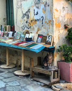 Selling books in Plaka district, Athens, Attica, Greece Airport Photos, Athens, Attica Greece, Places, Connect, Bond, Greek, Memories, Inspiration