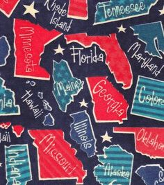 Snuggle Flannel Fabric-States