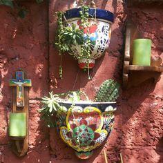 Suculentas y macetas mexicanas