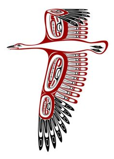 image northwest pacific canadian first nations art prints snow goose