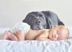Lief plaatje van baby en hond