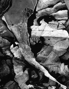 Minor White. 'Moencopi Strata, Capitol Reef National Park, Utah' 1962