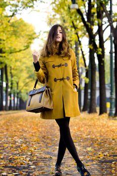 落叶黄,适合深秋完美色调。