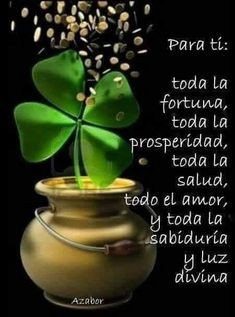 Discipline Quotes, San Patrick, Tree Branches, Happy Birthday, Make It Yourself, The Originals, Plants, Spanish Quotes, Mantra