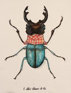 Urban Bugs: Ilustraciones de insectos a la moda