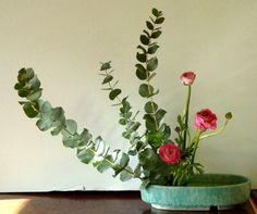 eucalyptus and ranunculas