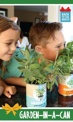 Gift an indoor herb garden for the future farmer in the family - plant, water, and grow! Fun, fresh, and organic, with four different edible herbs: basil, cilantro, sage, and dill. Give the gift that grows! Shop this gift at http://backtotheroots.com/collections/ready-to-grow/products/gardeninacan