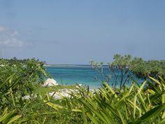 Xcacel beach, Tulum/Akumal, Riviera Maya, Quintana Roo, Mexico