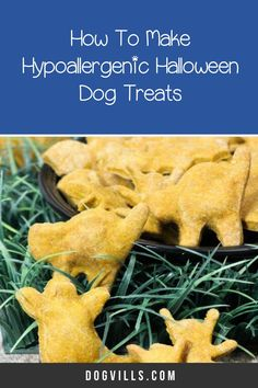 You already have your pup on the best hypoallergenic dog food, but finding great hypoallergenic dog treats can seem a little daunting at times. Halloween Cookie Cutters, Halloween Cookies, Homemade Halloween, Dog Halloween, Hypoallergenic Dog Treats, Best Dog Food, Homemade Dog Treats, Dog Food Recipes, Pup