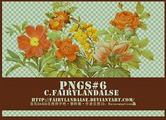 pngs-flowers#6 by Fairylandalse.deviantart.com on @deviantART