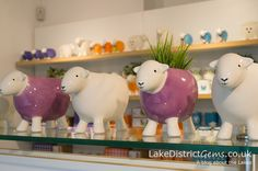 Inside the Herdy shop in Keswick Keswick Lake District, Cumbria, Go Shopping, Piggy Bank, Places To Travel, Sheep, Money Box, Destinations, Money Bank