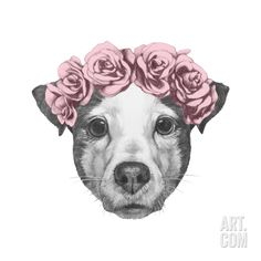 Original Drawing of Jack Russell with Floral Head Wreath. Isolated on White Background. Art Print by victoria_novak at Art.com