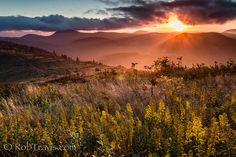 https://flic.kr/p/g5khDx   Golden Glory [E x p l o r e d]   Sunset over Sam Knob in the Shining Rock Wilderness. Art Loeb Trail on Black Balsam Knob.