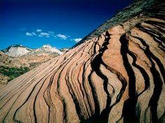 Natural sandstone formation,  Zion national park