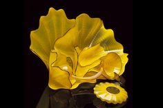 Dale Chihuly | Bon Expose - Museum of Art and Design