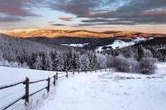Krkonoše - pastviny na Rýchorách (foto: Jakub Müller)