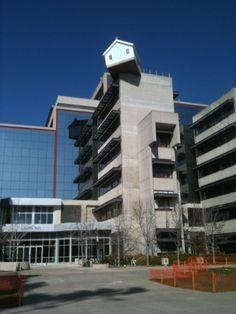 Fallen Star en San Diego, una 'casa en el tejado' que acoge a los estudiantes extranjeros de la Universidad.