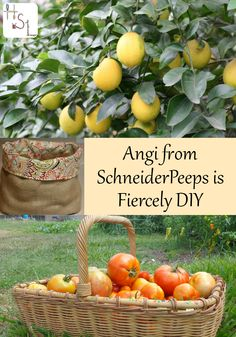 An interview with Angi from SchneiderPeeps about her Fiercely DIY habits.