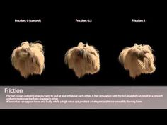 Hair Dynamics Settings Overview