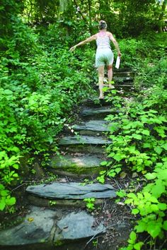 Garges then leads us on the stone stairs up the steep hillside...  Woodland garden steps?