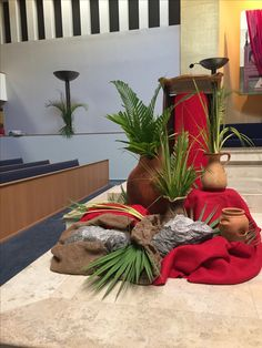 Liturgical environment ministry, Palm Sunday , St John Neumann Catholic Church Miami