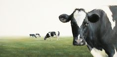 Sold | Four Cows, oil/canvas 16 x 32 inch (40 x 80 cm) © 2010 Klimas