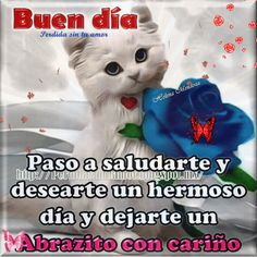 FRASES PARA TI: BUEN DIA ver mas aqui... Good Morning Greetings, Good Morning Good Night, Good Morning Quotes, Good Day Images, Hello In Spanish, Best Gift Cards, Happy Week, Spanish Quotes, Adult Humor