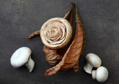 mushroom carving art