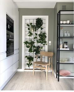 Derfor har Pernille vundet en pris for sine farvevalg derhjemme - Modern Interior Plants, Diy Interior, Interior Design, Decor Room, Behr, Scandinavian Design, House Colors, My Dream Home, New Homes