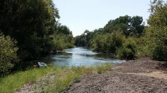 https://flic.kr/p/YoUfka | Russian River | Taking a break while paddling down the Russian River South of Healdsburg, California on a beautiful, 95 degree day in early Sept. The beer is almost gone but still have plenty of food, water and fun.  This was my 10th canoe trip on this river and we finally had an otter sighting shortly after continuing downstream - And not just a glimpse - but a good 3 or 4 minute period where they swam along the bank, going downstream just a little faster than we…