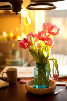 Tulips. My future home will have fresh flowers always.
