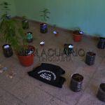 Se secuestró Marihuana en pleno centro de Tinogasta