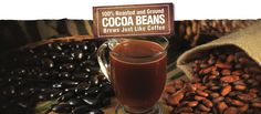 Crio Bru | Brewed Cocoa | Brewed Chocolate | Caffeine Alternative | Antioxidant Rich