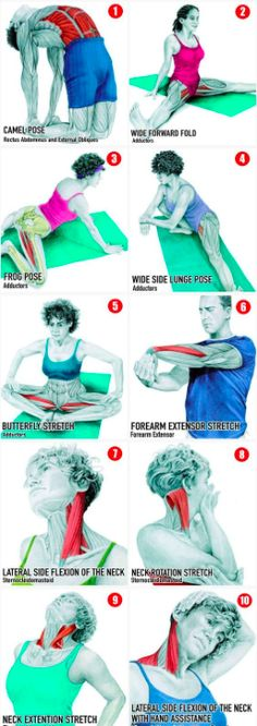 34 Pictures To See Which Muscle You're Stretching – C/R