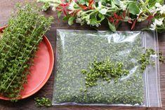 しその実(穂紫蘇)の上手な保存法をご紹介します。しその実(穂紫蘇)とは、しその花が落ちたあと、実が未熟なうちに、穂先だけを収穫したものことです。収穫の季節は、だいたい9月〜10月中旬。しその実は、ご飯に混ぜても美味しいですし、料理の風味付けとしても便利です。