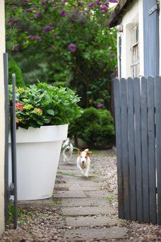 Donice nuno'ni w ogrodzie  http://www.nunoni.com/pl/index/