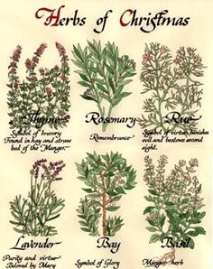 Google Image Result for http://www.calligraphica.com/images/herb1.jpg