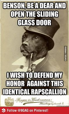 Old Money Dog defends his honor
