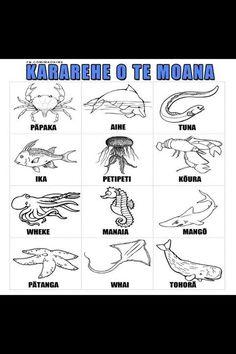 Kararehe o Te Moana