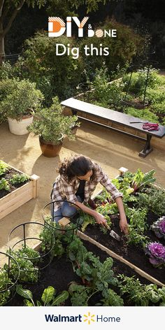 Espectacular Create a sustainable garden fast & affordably! Shop the planters & containers th. Create a sustainable garden fast & affor. Garden Yard Ideas, Veg Garden, Edible Garden, Garden Beds, Garden Projects, Garden Planters, Pvc Projects, Garden Park, Vegetable Gardening