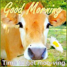 Good Morning Time To Get Moving morning good morning morning quotes good…