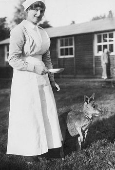 Photo taken during the First World War. An Australian nurse at No 1 Australian Auxiliary Hospital about to feed their pet kangaroo Jimony. Vintage Nurse, Vintage Medical, World War One, First World, Professional Nurse, Caption Contest, Anzac Day, Medical History, Women's History
