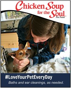#LoveYourPetEveryDay, Baths and Ear Cleanings, as Needed (Chicken Soup For the Soul Poster)