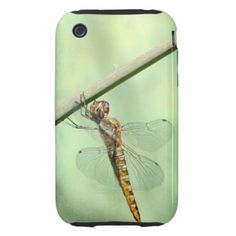 =>quality product          	Dragonfly iphone case iPhone 3 tough cover           	Dragonfly iphone case iPhone 3 tough cover you will get best price offer lowest prices or diccount couponeHow to          	Dragonfly iphone case iPhone 3 tough cover Review on the This website by click the button...Cleck link More >>> http://www.zazzle.com/dragonfly_iphone_case_iphone_3_tough_cover-179299742590586437?rf=238627982471231924&zbar=1&tc=terrest