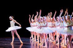 swan lake. odette. ballet.